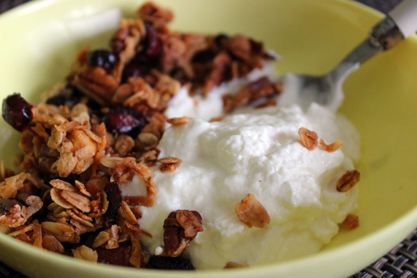 The Easiest Homemade Yogurt Ever