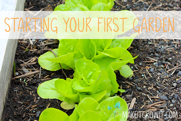 Starting Your First Vegetable Garden