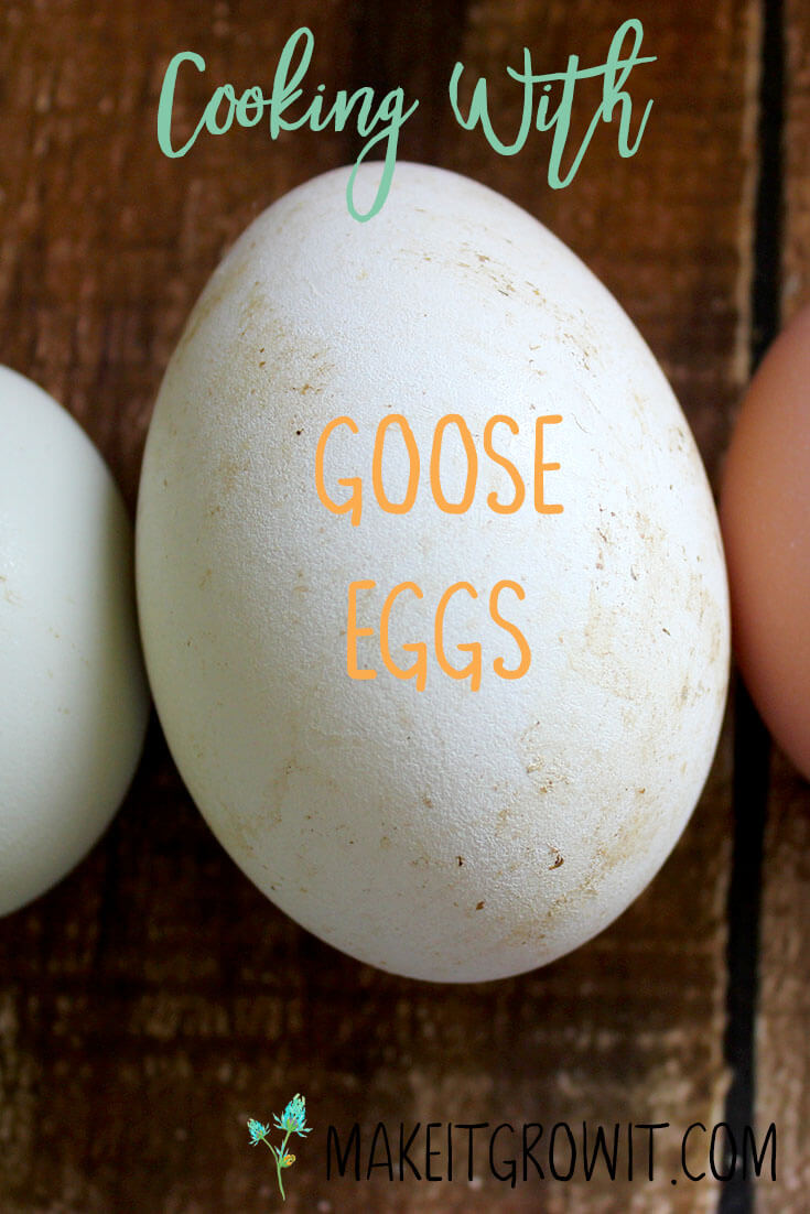 A Guide to Cooking and Baking with Goose Eggs by Make It. Grow It.