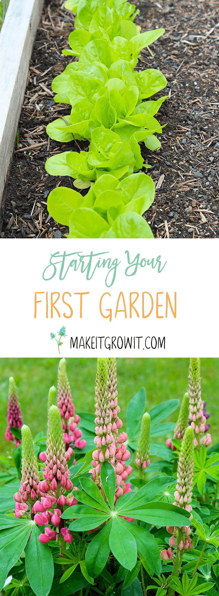 A Guide to Starting Your First Garden by Make It. Grow It. - Click here to read now or Pin It to save for later.